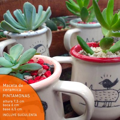 Maceta de Ceramica Pintamonas