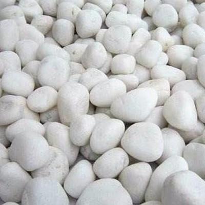 Piedra Bianco x 25 kg